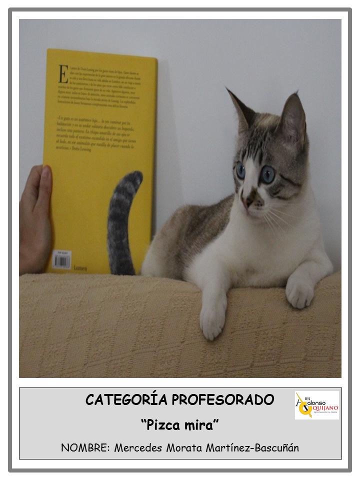 "Concurso interdisciplinar ""Fúndete con un libro"""